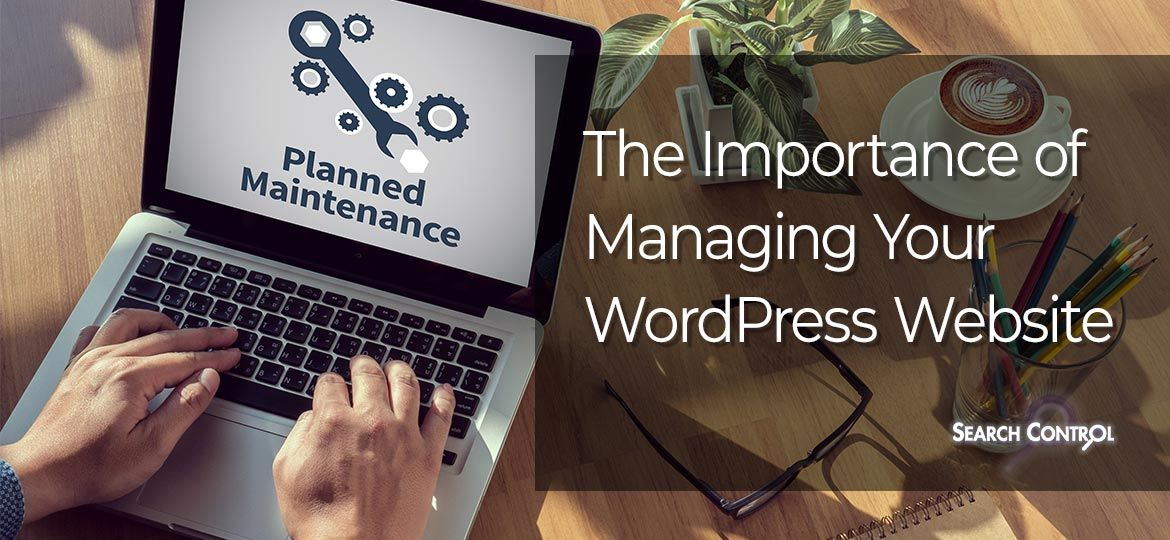 Managing a WordPress Website